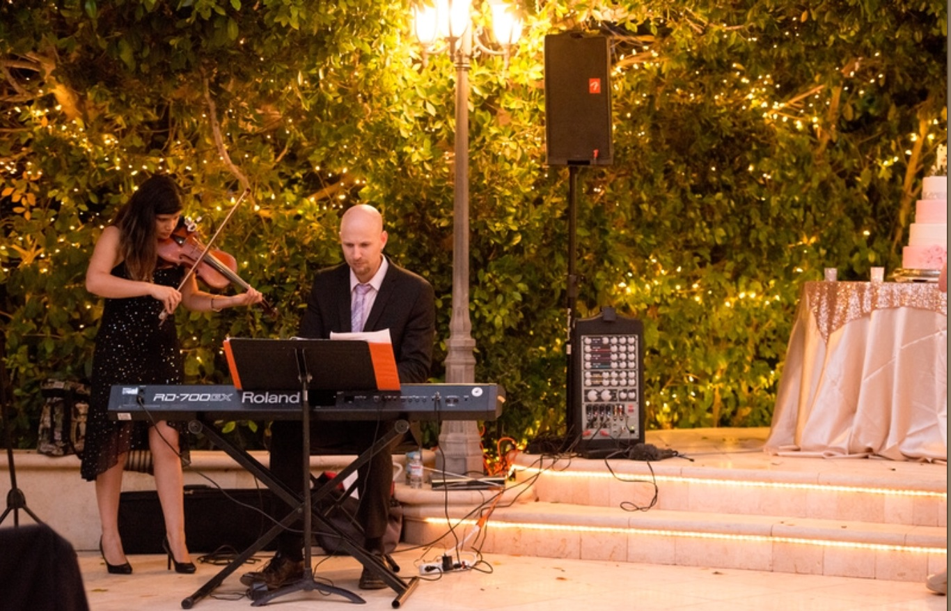 Playing a wedding reception with violinist